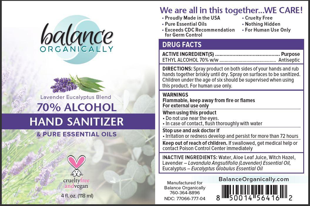 01b Hand Sanitizer_70pct EtOH_4oz