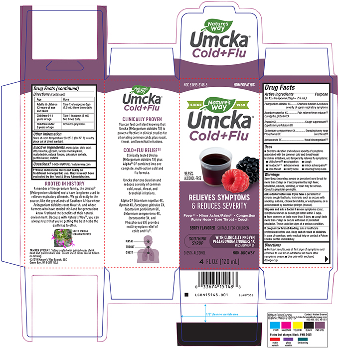 15148_B01 Umcka Cold & Flu Berry Syrup.jpg