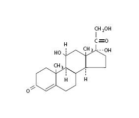 Neomycin And Polymyxin B Sulfates, Bacitracin Zinc And Hydrocortisone | Neomycin Sulfate And Polymyxin B Sulfate, Bacitracin Zinc And Hydrocortisone Ointment breastfeeding risks