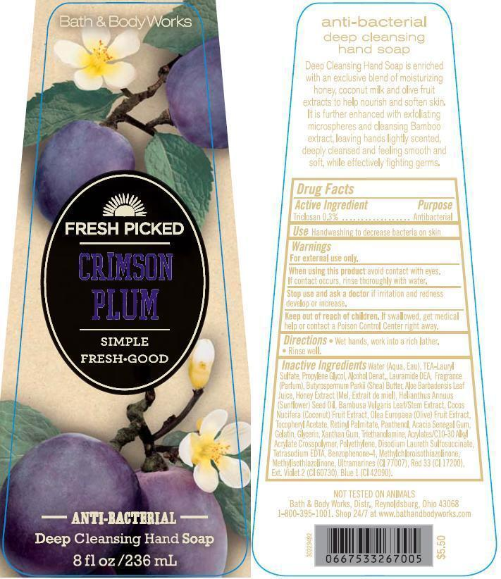 Anti-bacterial Deep Cleansing Hand Fresh Picked Crimson Plum | Triclosan Soap while Breastfeeding