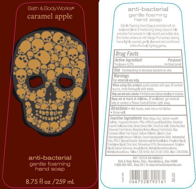 Anti-bacterial Gentle Foaming Hand Caramel Apple | Triclosan Soap Breastfeeding