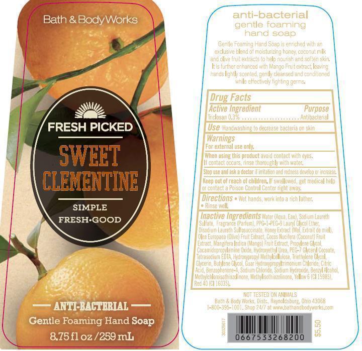 Anti-bacterial Gentle Foaming Hand Fresh Picked Sweet Clementine | Triclosan Soap Breastfeeding