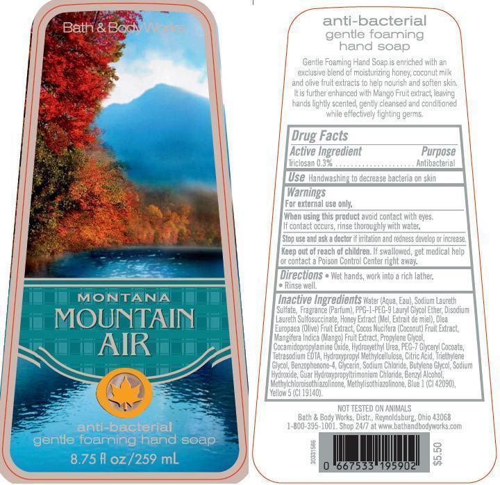 Anti-bacterial Gentle Foaming Hand Montana Mountain Air | Triclosan Soap Breastfeeding