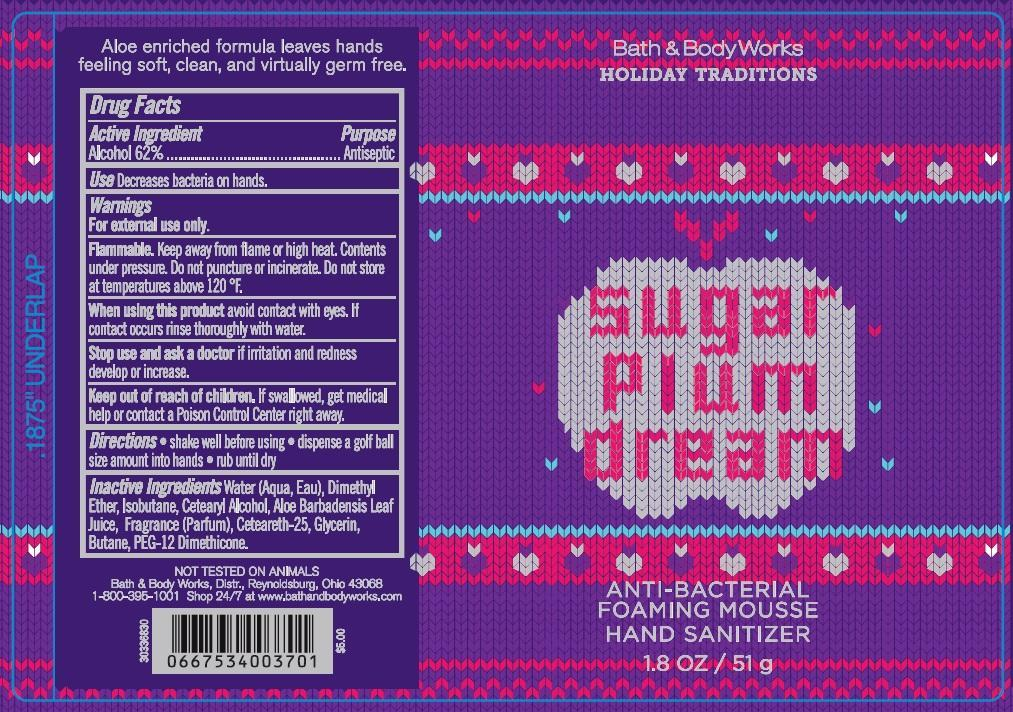 Anti-bacterial Foaming Mousse Hand Sanitizer Sugar Plum Dream   Alcohol Aerosol, Foam Breastfeeding