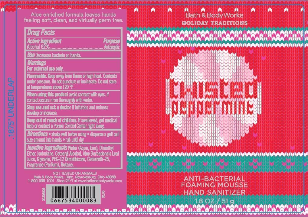 Anti-bacterial Foaming Mousse Hand Sanitizer Twisted Peppermint | Alcohol Aerosol, Foam Breastfeeding