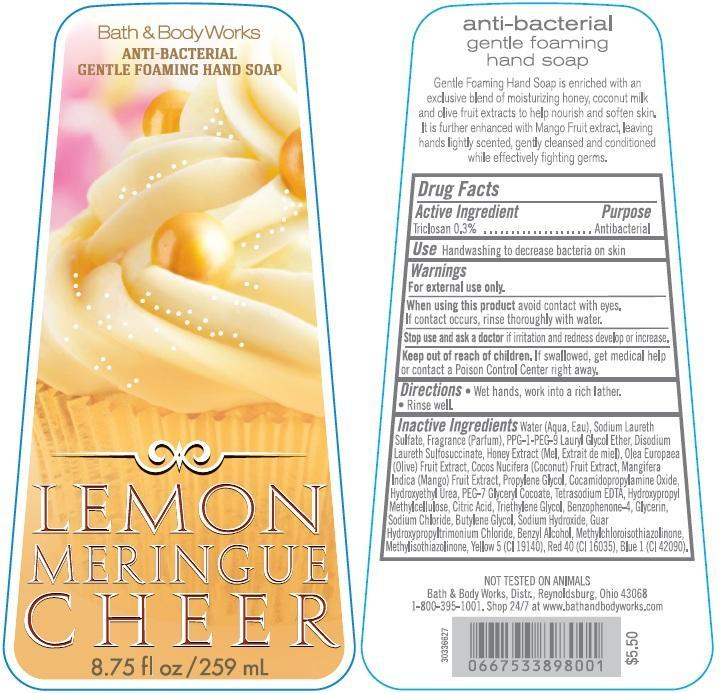 Anti-bacterial Gentle Foaming Hand Lemon Meringue Cheer | Triclosan Soap Breastfeeding