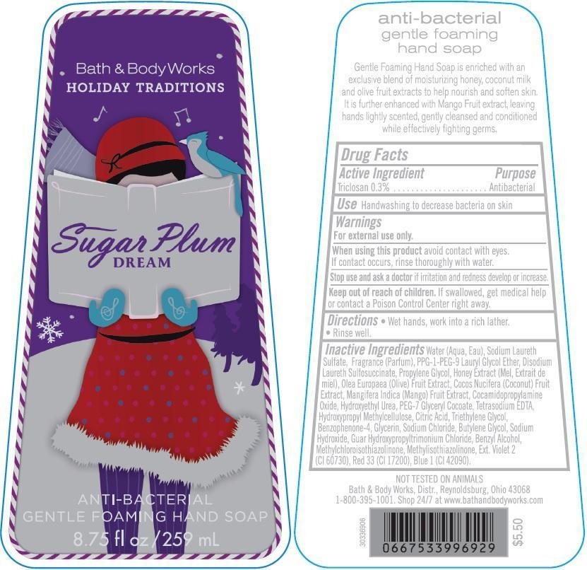 Anti-bacterial Gentle Foaming Hand Sugar Plum Dream | Triclosan Soap Breastfeeding
