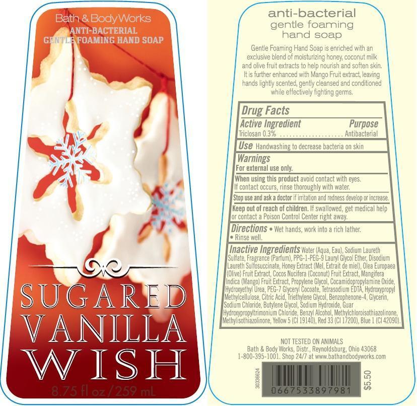 Anti-bacterial Gentle Foaming Hand Sugared Vanilla Wish | Triclosan Soap Breastfeeding