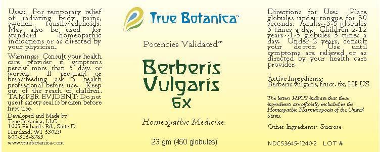 Berberis Vulgaris Globule Breastfeeding