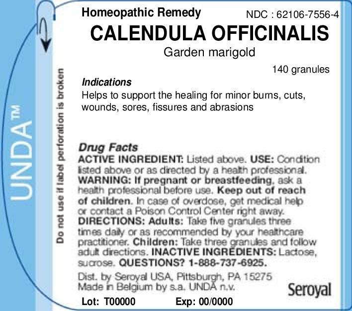 Calendula Officinalis   Garden Marigold Granule Breastfeeding