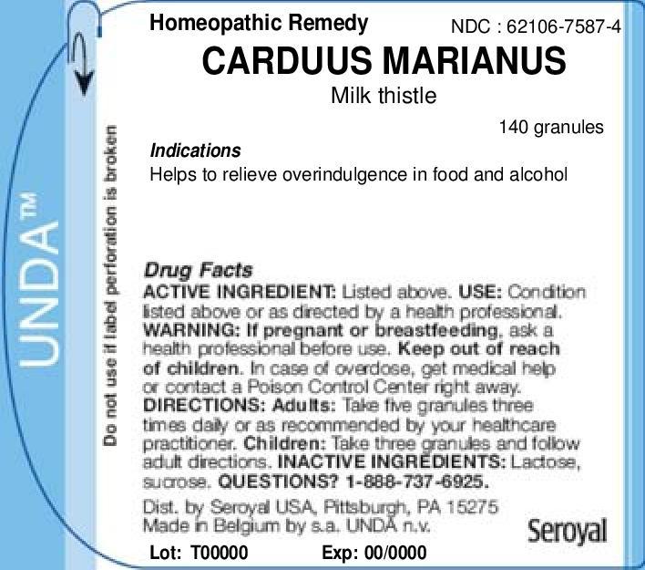 Carduus Marianus | Milk Thistle Granule Breastfeeding