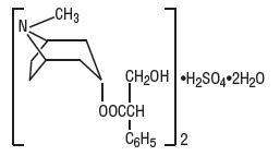 Hyoscyamine Sulfate Solution/ Drops and breastfeeding