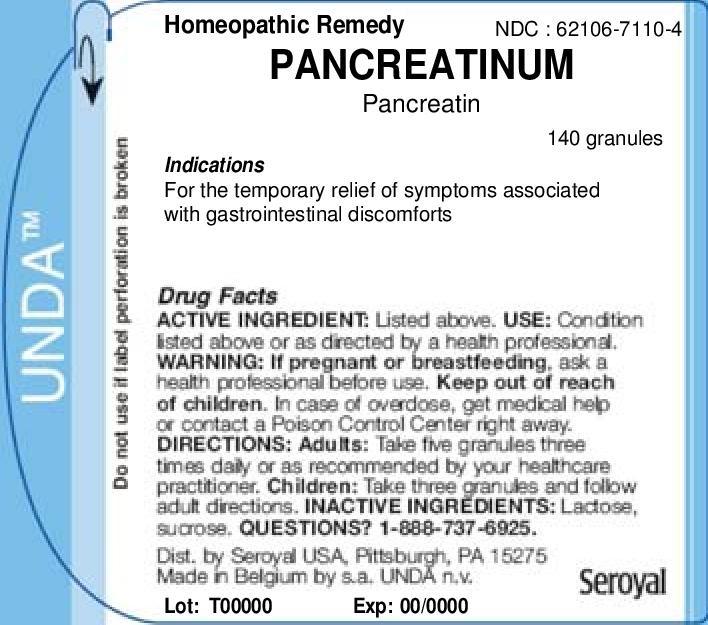 Pancreatinum   Pancreatin Granule Breastfeeding