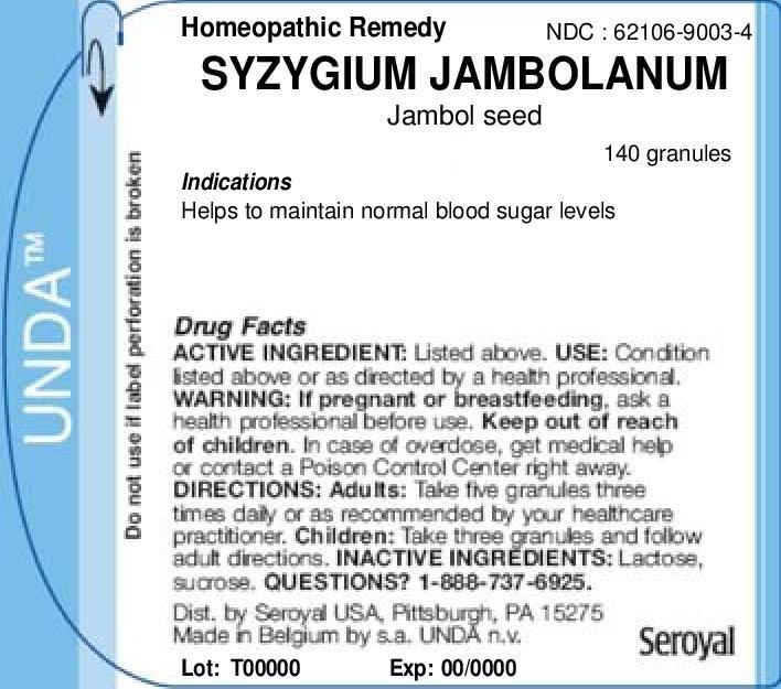 Syzygium Jambolanum   Jambol Seed Granule Breastfeeding