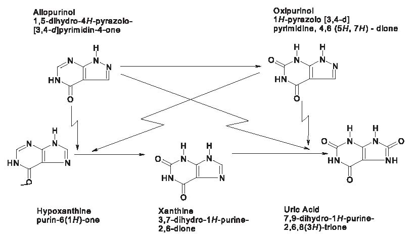 Allopurinol Figure1