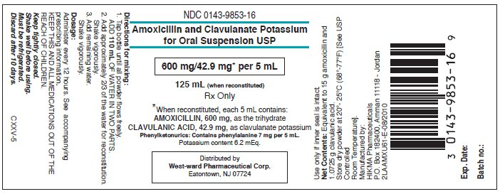 Amoxicillin and Clavulanate Potassium for Oral Suspension USP 125 mL