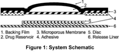 Figure 1: System Schematic