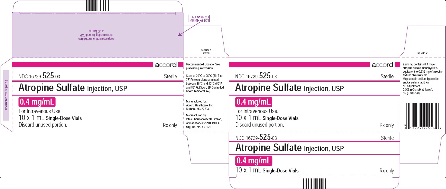 PRINCIPAL DISPLAY PANEL - Atropine Sulfate Injection, USP 0.4 mg/mL 10 Vials Carton
