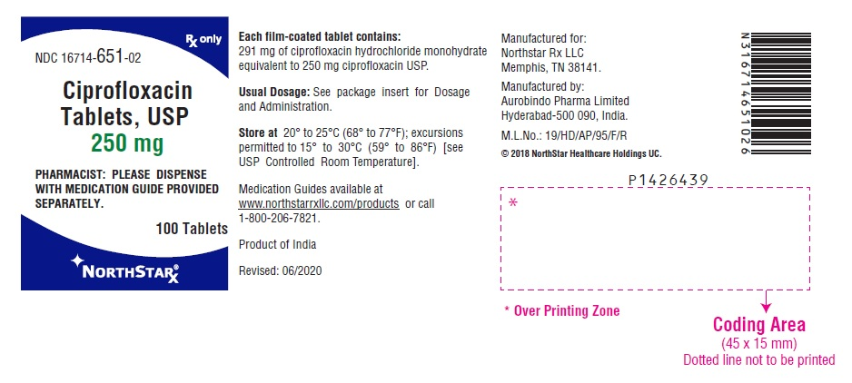 PACKAGE LABEL-PRINCIPAL DISPLAY PANEL - 250 mg (100 Tablets Bottle)
