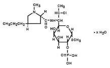 Cleocin   Clindamycin Phosphate Cream and breastfeeding