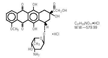 Doxorubicin Hydrochloride Injection, Powder, Lyophilized, For Solution and breastfeeding
