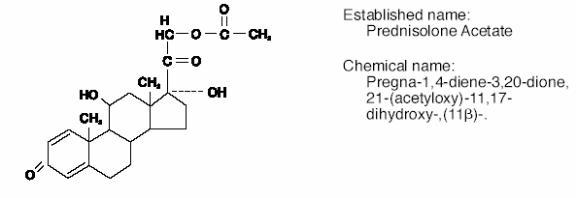 Econopred   Prednisolone Acetate 10 Mg In 1 Mg Breastfeeding