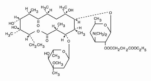 Erythromycin Ethylsuccinate Tablet Breastfeeding
