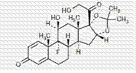 Triamcinolone Acetonide Triamcinolone Acetonide 1 Mg and breastfeeding