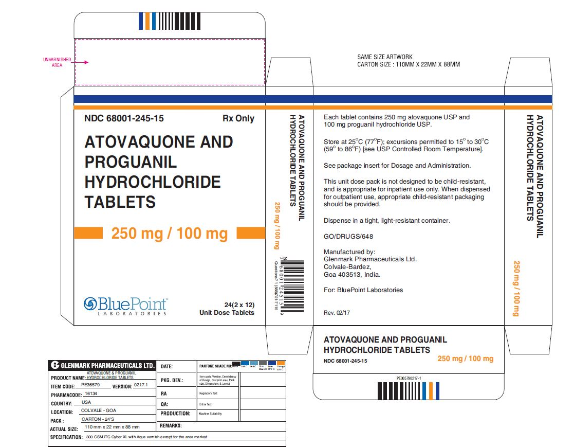 Atovaquone and Proguanil HCl Tablets 250_100mg 24 Unit Dose Tablets Carton Label Rev 02/17