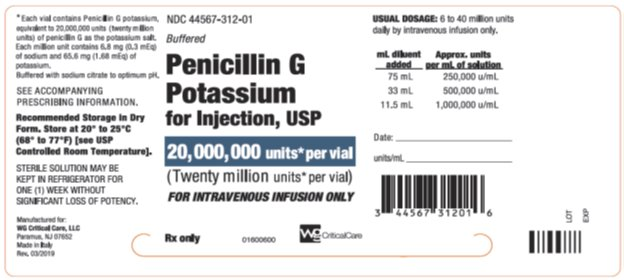 Penicillin G Potassium for Injection, USP 20,000,000 units* per vial label image
