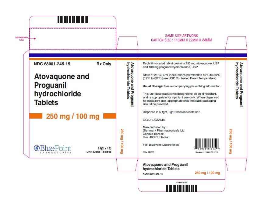 Atovaquone and Proguanil HCL Tablets rev 05 20 carton