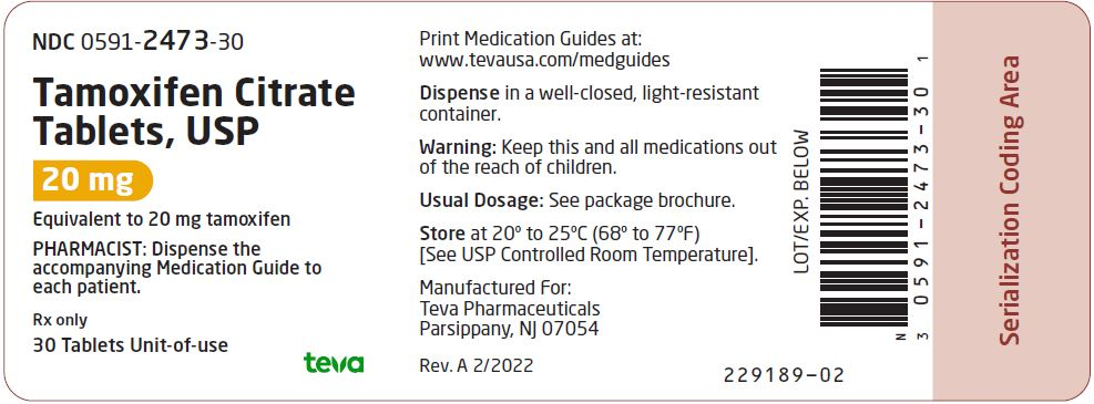 PRINCIPAL DISPLAY PANEL NDC 0591-2473-30 Tamoxifen Citrate Tablets, USP 20 mg 30 Tablets Rx Only