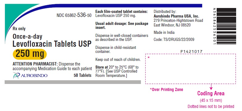 PACKAGE LABEL-PRINCIPAL DISPLAY PANEL - 250 mg (50 Tablet Bottle)