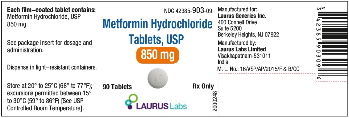 PRINCIPAL DISPLAY PANEL - Container Label (850 mg - 90's count)