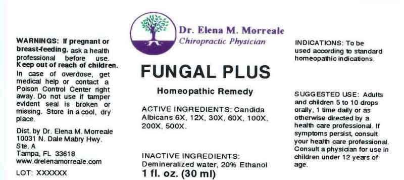 Fungal Plus | Candida Albicans, Liquid Breastfeeding