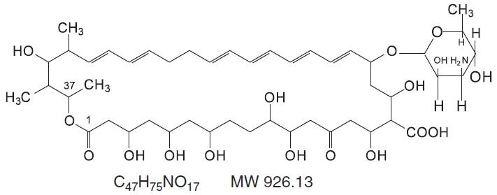 Nystatin Structure