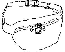 portable locking pouch