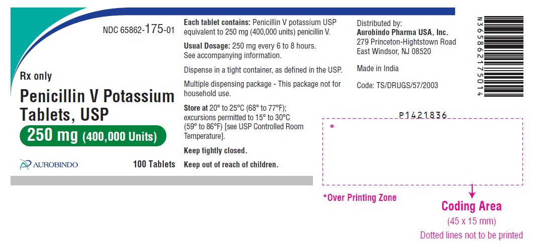 PACKAGE LABEL-PRINCIPAL DISPLAY PANEL - 250 mg (100 Tablet Bottle)