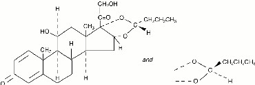 Pulmicort Turbuhaler | Budesonide Powder, Metered and breastfeeding