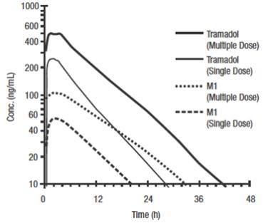 Figure 1: Mean Tramadol and M1 Plasma Concentration Profiles after a Single 100 mg Oral Dose and after Twenty-Nine 100 mg Oral Doses of Tramadol HCl given q.i.d.