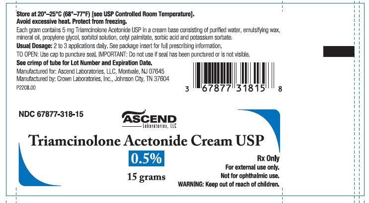 Triamcinolone Acetonide Cream USP 0.5% 15 gm tube