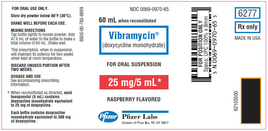 PRINCIPAL DISPLAY PANEL - 25 mg Oral Suspension Bottle Label