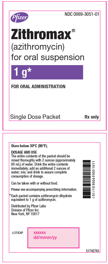 PRINCIPAL DISPLAY PANEL - 1 g Packet Label