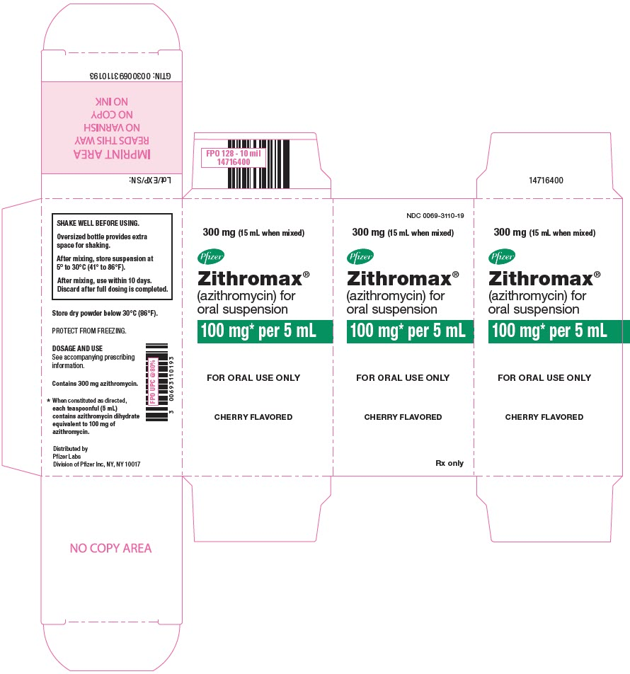 PRINCIPAL DISPLAY PANEL - 300 mg Bottle Carton