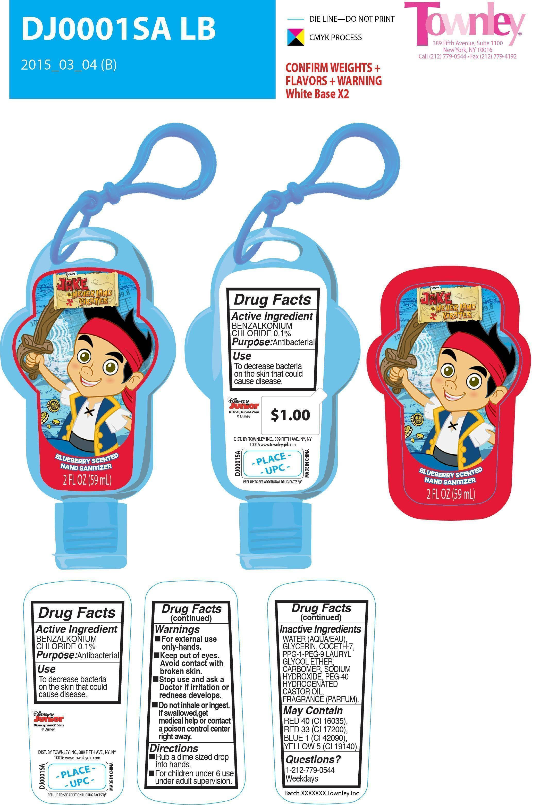 Blueberry Scented Hand Sanitizer Information, Side Effects, Warnings