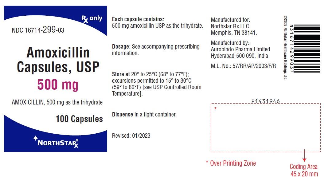 DailyMed - AMOXICILLIN - amoxicillin capsule