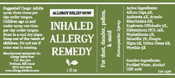 Allergy Now Inhaled Allergy Remedy
