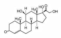 This is an image of the structural formula for hydrocortisone.