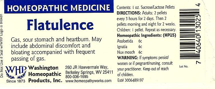 Flatulence (Asafetida – Strychnos Ignatii Seed – Nutmeg) Pellet [Washington Homeopathic Products]