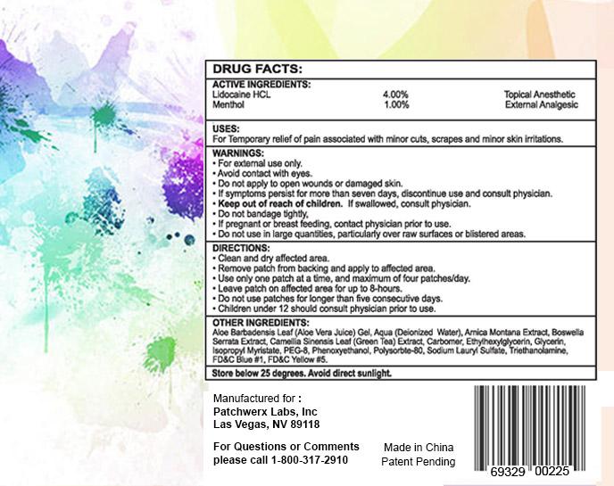 Lidonexe (Lidocaine, Menthol) Patch [Patchwerx Labs, Inc.]